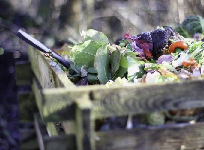 Co patří a nepatří do kompostu?