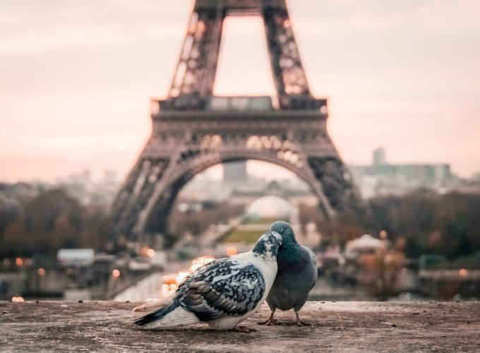 Eiffelovka jako dominanta Paříže. Co jste o ocelové dámě nevěděli?